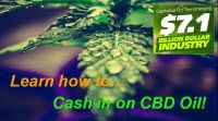 cash in cbd oil